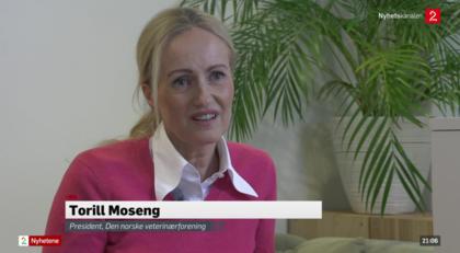 Torill Moseng på TV2