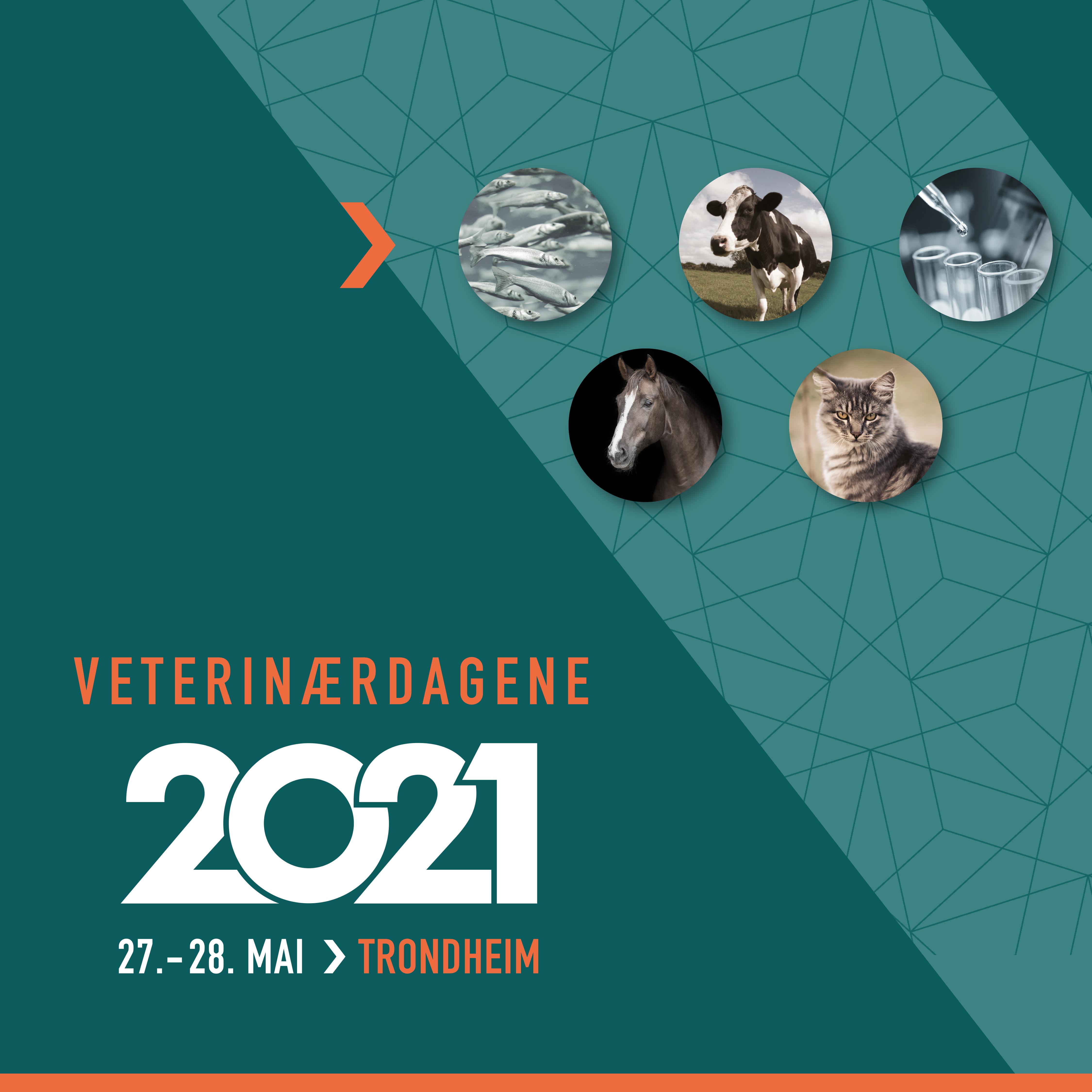 Veterinærdagene 2021